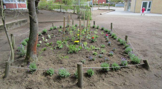 Der Gartentag 2017